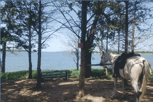 Platter Flats Campground – Lake Texoma