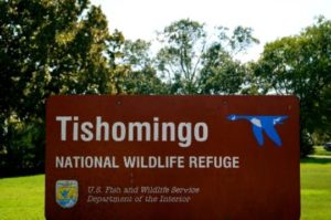 Tishomingo National Wildlife Refuge Hiking