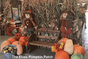 Elves Pumpkin Patch